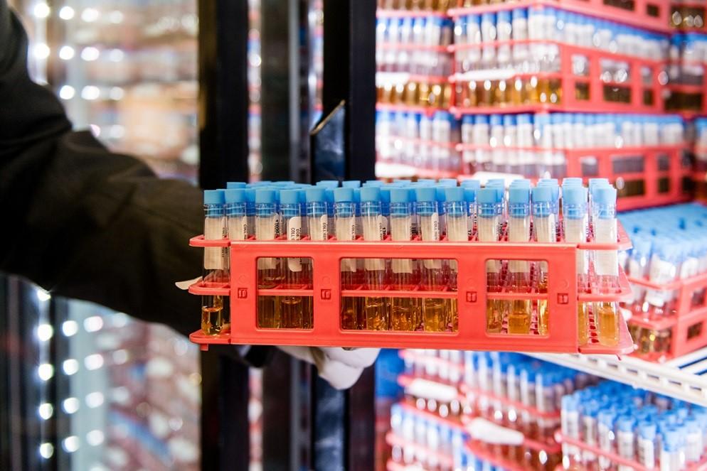 liquid gold tubes.jpg
